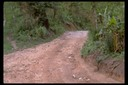 Road to a Hmong village, Thailand, 1986